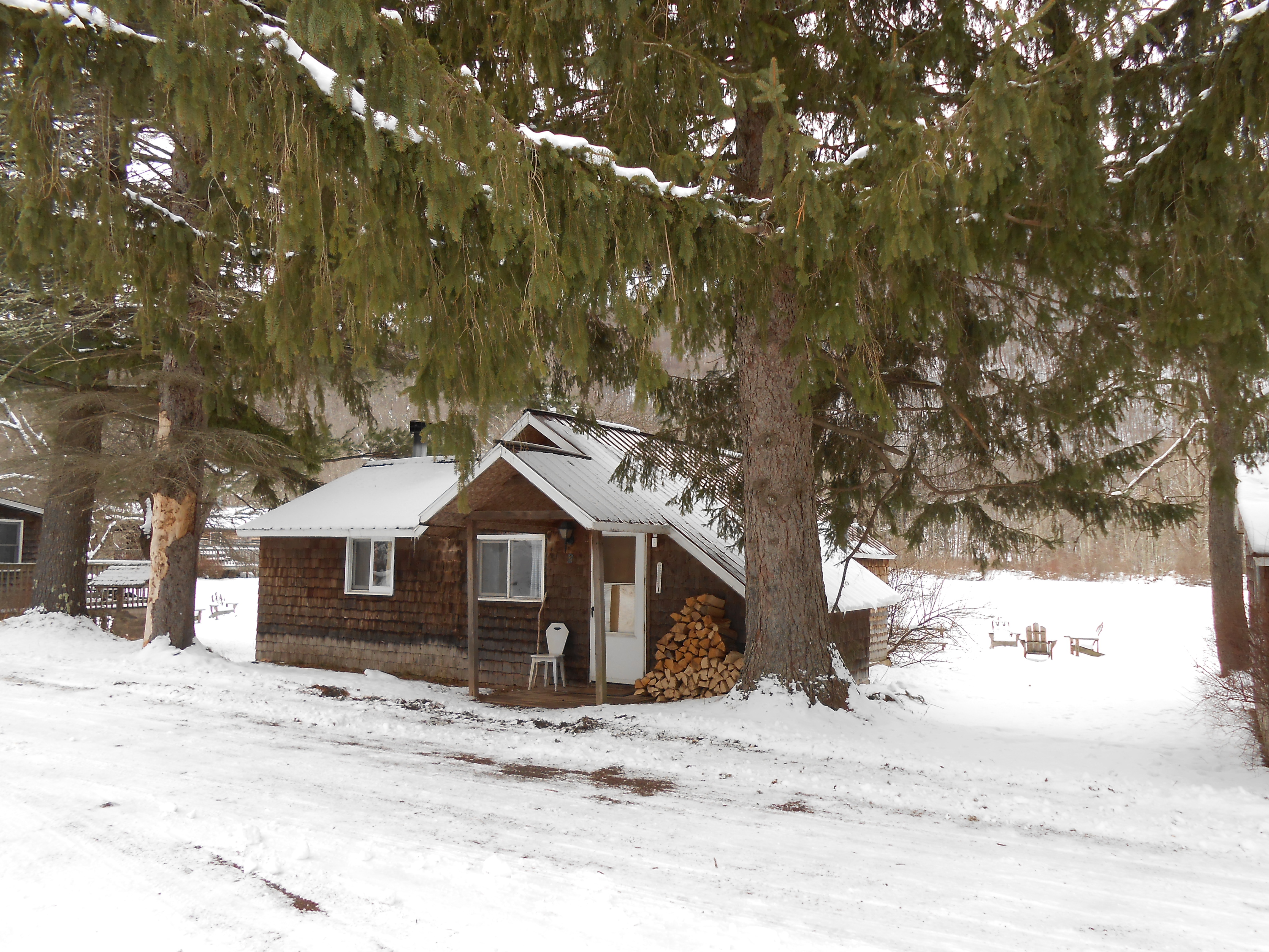 Winter Cabin Rental with Fireplace