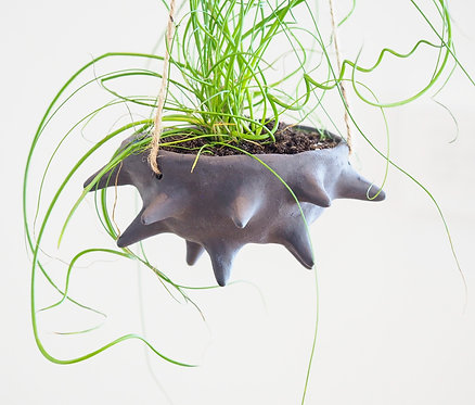 ONYX   Hanging planter