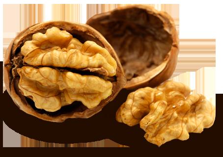 Trois noix par jour, la forme pour toujours