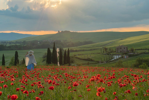 Under the Tuscan Sun with Maria