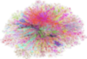 Colorful schematic of a rhizome