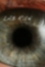 Poster of the theater production Woyzeck TR featuring a close-up of a single eyeball with a wide pupil.