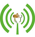 acorn-radio.jpg