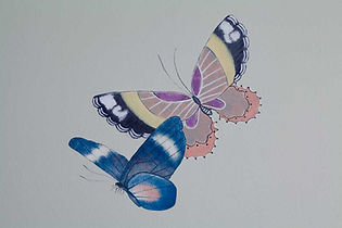 Decorative wall painting detail of butterflies