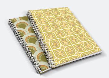 Orla Ros notebook image.jpg