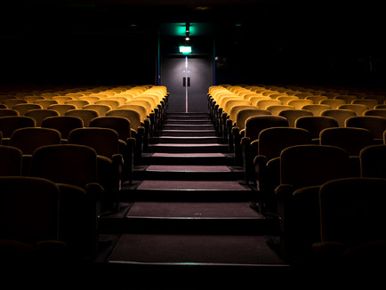 Bill Ward Photography - Theatres in Danger