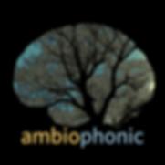 ambiophonic artist-2.png