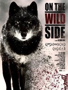 java-films-on-the-wild-side-poster.jpg
