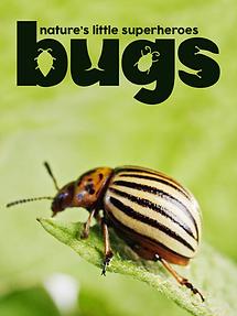 Bugs: Nature's Little Superheroes
