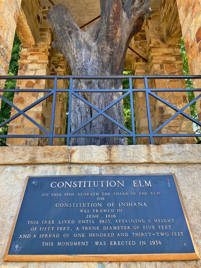 The Constitutional Elm Marker