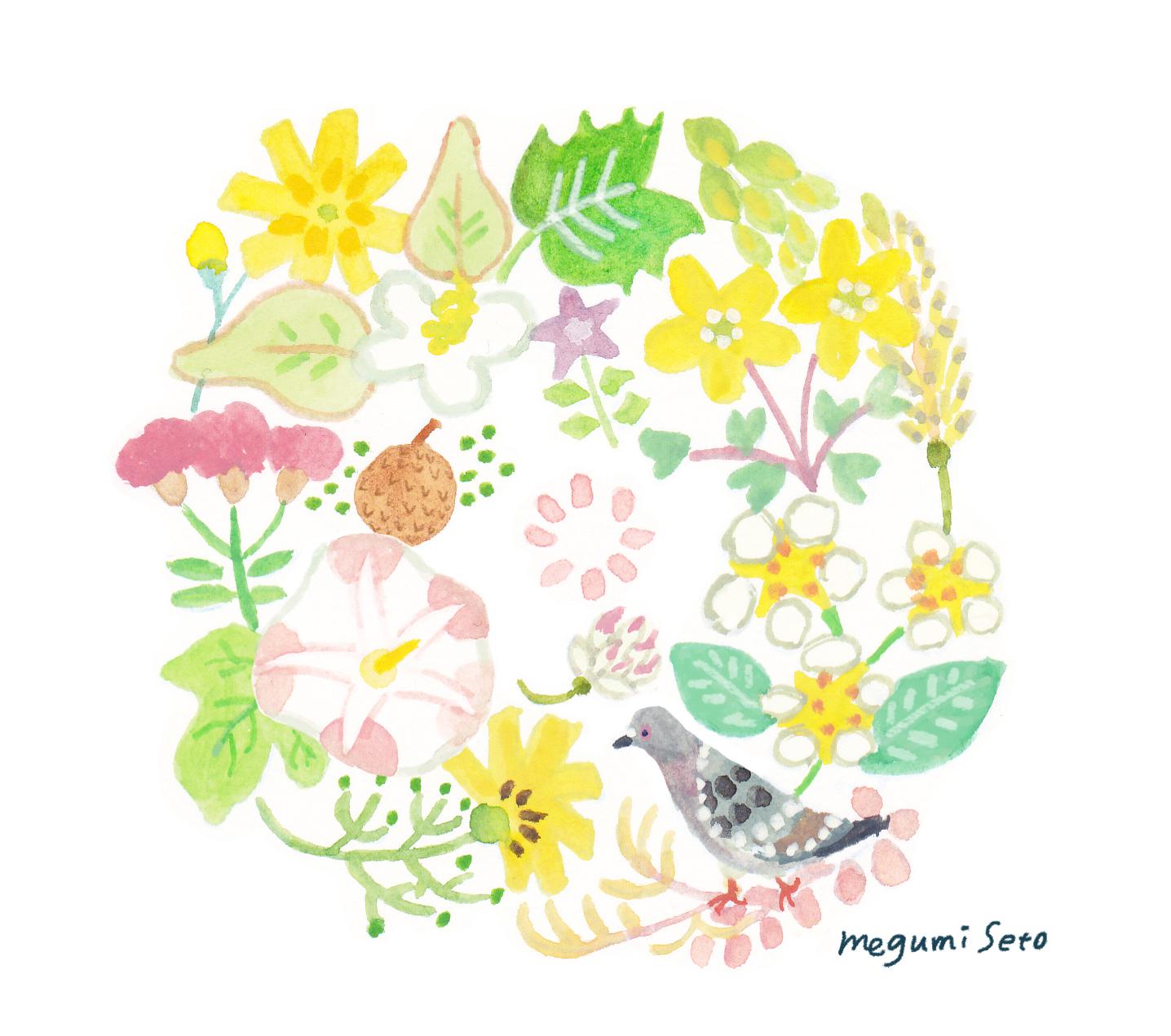 5月野花と鳩
