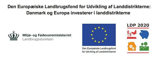 LBST_EU_LDP_ai.jpg