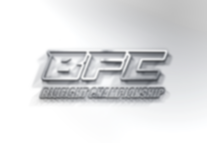logo-Blufight-Prata---Sem-fundo.png