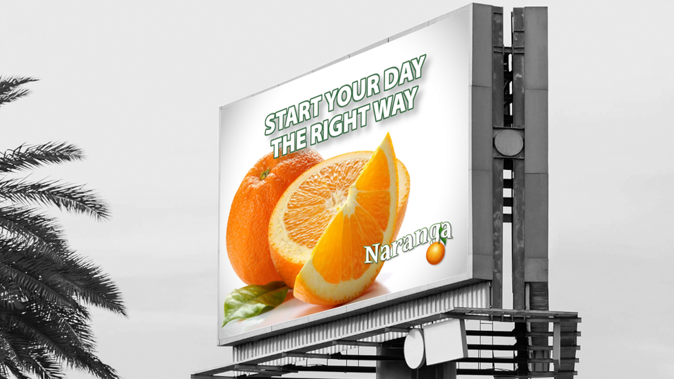 Traditional and Digital Advertising Campaigns