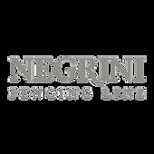 logo_negrini.png