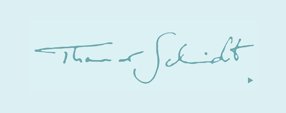 ak.ts.logo.start2.png