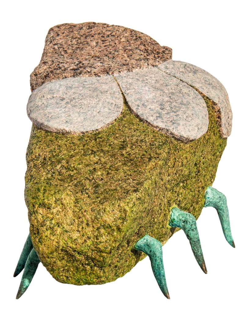 Blumenkäfer