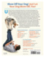 dog-tricks-book-back-cover-Larry-Kay-Chr
