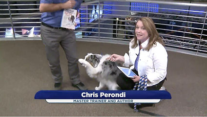 Chris-Perondi-Vinny-KWGN-TV-Denver-Trick