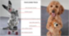 dog-tricks-book-Larry-Kay-Chris-Perondi-