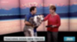 Chris-Perondi-dog-tricks-book-KING-TV-1.