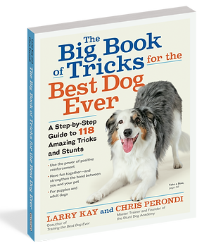 The-Big-Book-of-Tricks-for-the-Best-Dog-