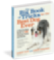 Dog-Tricks-And-Stunts-Book-Cover.png