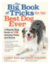 dog-tricks-book-front-cover-Larry-Kay-Ch