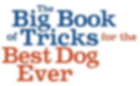 dog-tricks-book-logotype.png