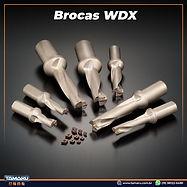 broca WDX.jpg