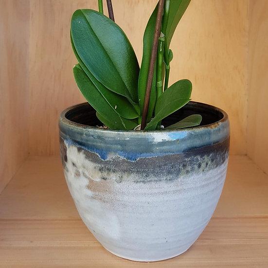 Bowl/Plant Holder