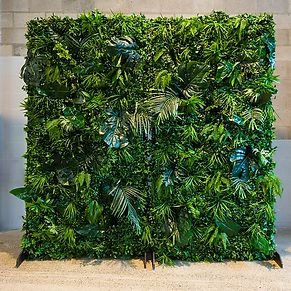 jungle wall.webp