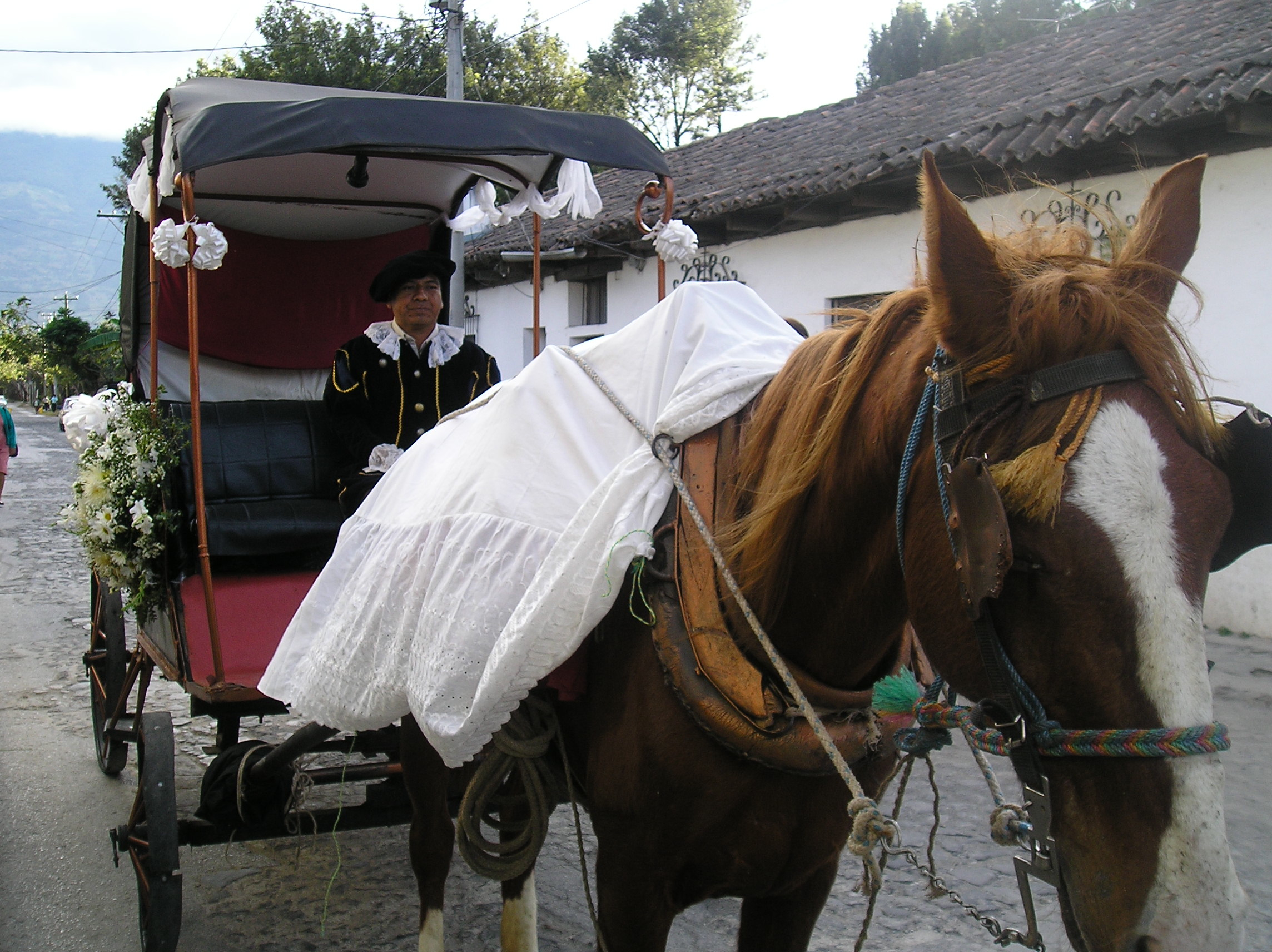 Antigua Guatemala Horse drawn carria