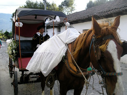Antigua Guatemala Horse drawn carria