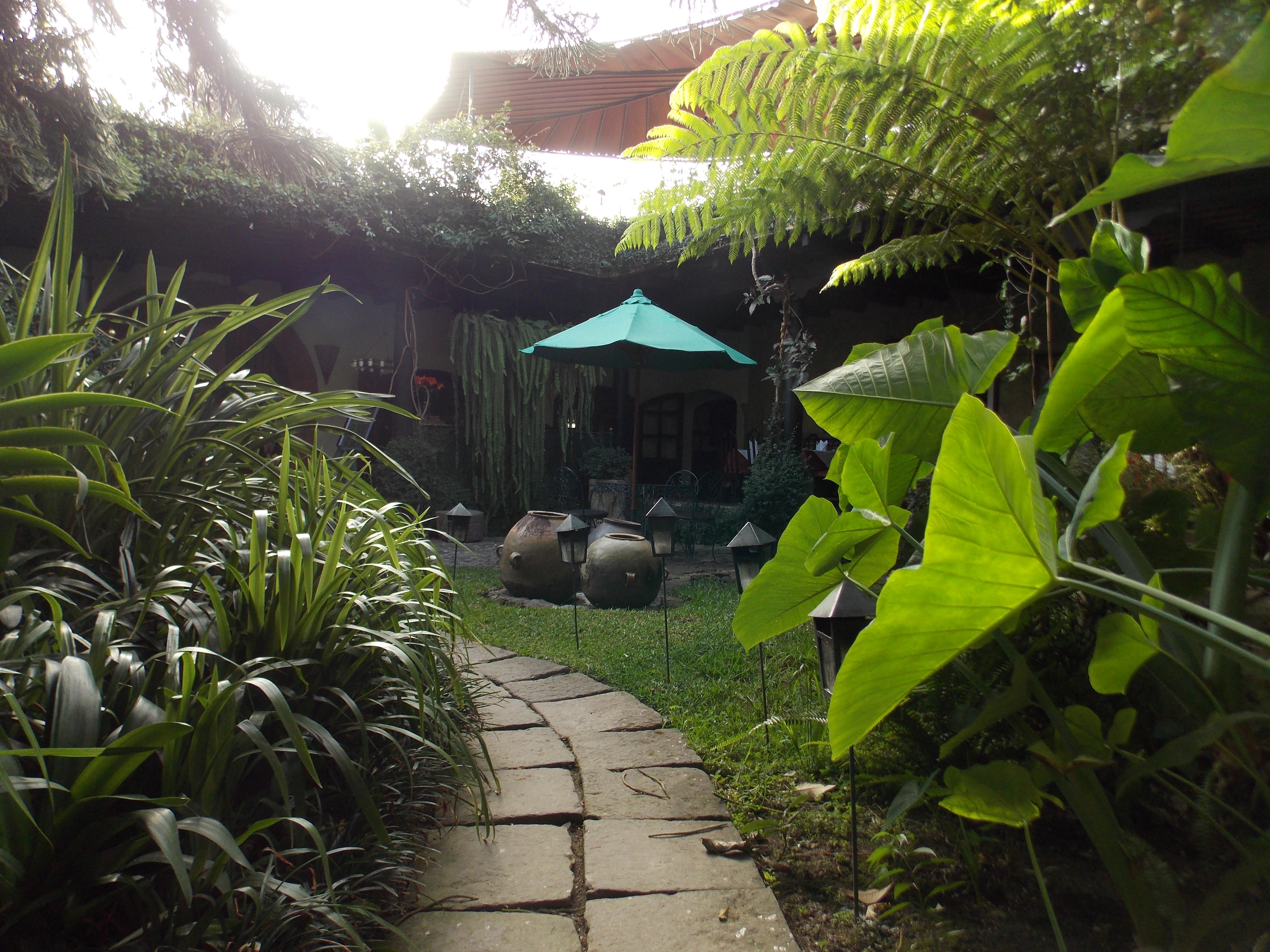 Meson Panza Verde Garden