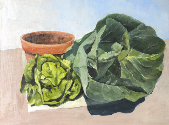 Still life with spring cabbage