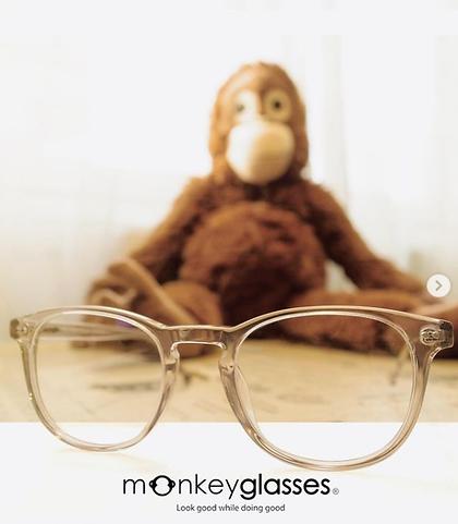 Lunettes Monkeyglasses La Louviere Ecaus