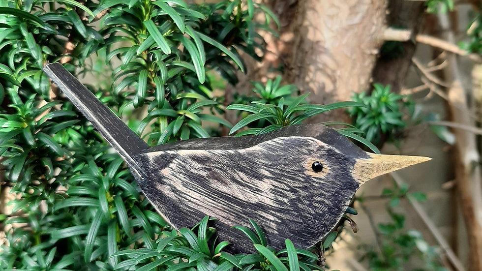 Wooden Oak Blackbird
