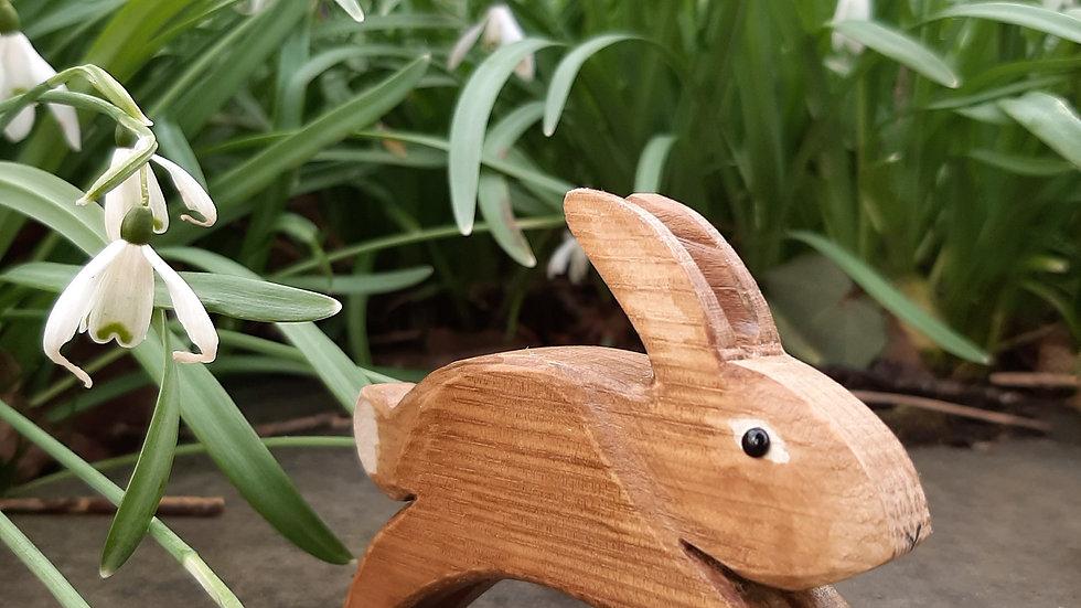 Rabbit running