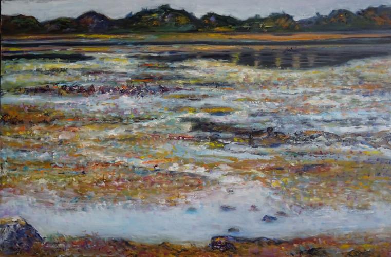 Marée basse à Tregastel