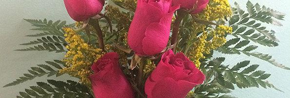 Delightful Half Dozen Roses