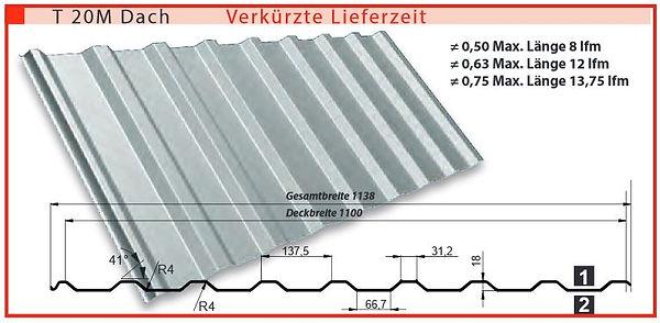 T20 M Stahltrapezblech kaufen.JPG