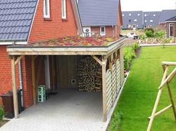 Carport Holz Gründach Natur
