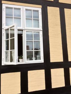 Sprossenfenster Denkmalschutz Bojso 3