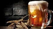 seja-um-mestre-cervejeiro-apostila-envio