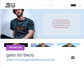 gato do beco.png
