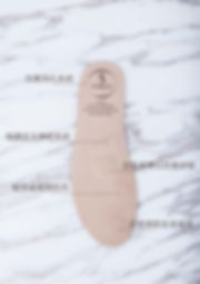 5ZONES hk INTRO [Recovered]-05.jpg