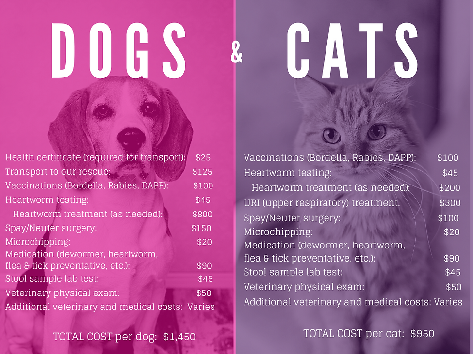 Dog and Cat costs.png