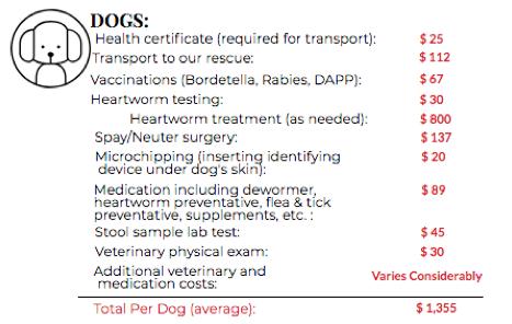 Dog Adoption Fee