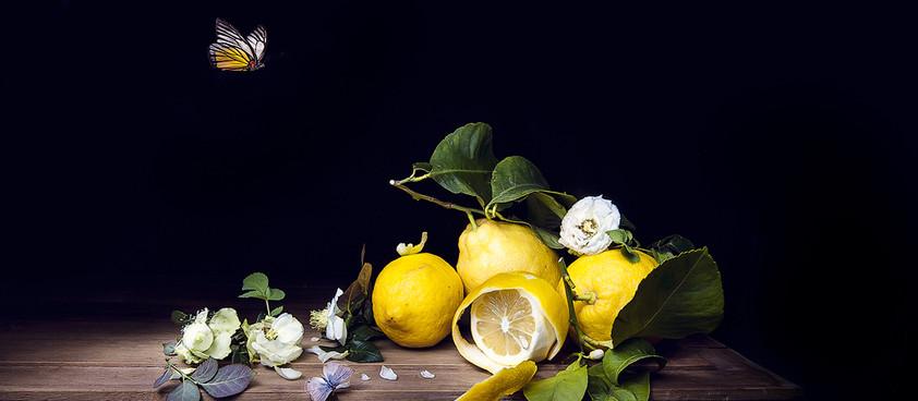"""I limoni della qualità """"madernina""""  e le """"Limonaie di Gargnano"""""""